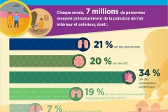 WHO Nada Air Pollution Slides cs6_FR3